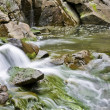 Small stream with waterfalls — Stock Photo #3388891