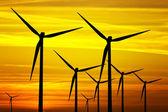 Větrné turbíny na golden sunset — Stock fotografie