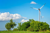 Summer landscape with wind turbine — Stock Photo