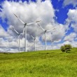 Green pasture and wind turbines farm — Stock Photo