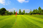 Beautiful golf course and blue sky — Stock fotografie