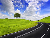 Road and green field — Stock Photo