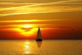 Sailing and sunset — Stock Photo