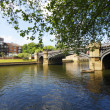 River in the York, UK - Foto Stock