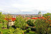 Colored picture of Prague — Stock Photo