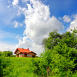 Stock Photo: New house and green nature