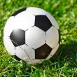 Royalty-Free Stock Photo: Soccer ball on green grass