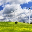 Wind turbines and green field - Stock Photo