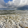 Ocean shore — Stock Photo #3813811
