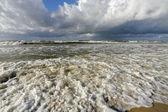 берег океана — Стоковое фото