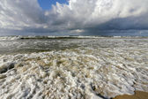 Rive de l'océan — Photo