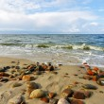 Stones on the beach — Stock Photo #3839782