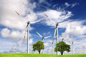 Ecology and wind power — Stock Photo