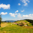 Mountain summer landscape — Stockfoto