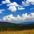 Summer mountain panorama - Stock Photo