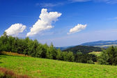 Green meadow with views of mountain landscapes — Stock Photo
