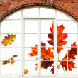 Stock Photo: Autumn view