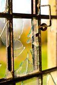 Windows — Stok fotoğraf