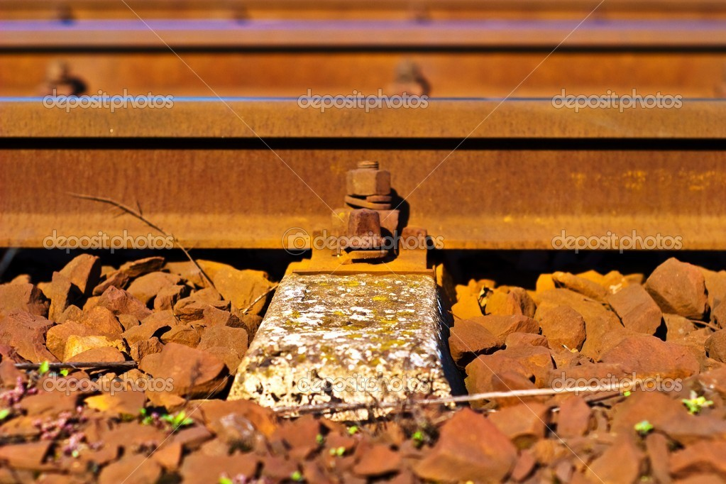 View of the railway track on a sunny day — Stock Photo #3175931