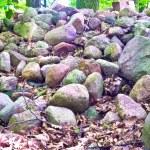 Stones — Stock Photo #3370700