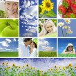 Summer collage — Stockfoto #2764468