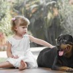 与宠物 — 图库照片