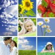 Summer collage — Stock Photo #2766807