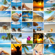 Tropic collage - Stock Photo