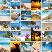 Tropická koláž — Stock fotografie