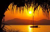 Kokosnoot zonsondergang — Stockfoto