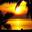Tropic sunset - Stock Photo