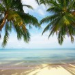 Royalty-Free Stock Photo: Tropic view