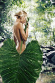 In jungle — Stock Photo