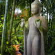 Buddhism - Foto de Stock