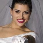 Beautiful brunette bride — Stock Photo #2876020