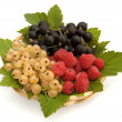 Stock Photo: Currants and raspberries