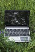 Laptop on grass — Stock Photo