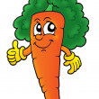 Curly carrot - Stock Photo