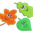 Cute autumn leaves — Stock Photo