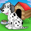 Dalmatian dog in front of kennel — Stock Photo