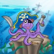 Pirate octopus with shipwreck - Stock Photo