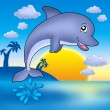 Cute dolphin with sunset — Stock Photo