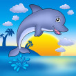 Cute dolphin with sunset — Stock Photo #2942504