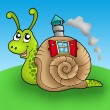 Stock Photo: Snail with shell house on meadow