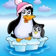 Two penguins on iceberg - Stock Photo