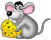 Cute mouse holding cheese — Stock Photo