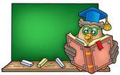 Owl teacher reading book on blackboard — Stock Photo