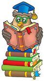 Reading owl teacher on books — Stock Photo
