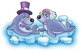 Wedding image with cute seals — Stock Photo