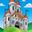 Medieval castle on hill — Stock Photo #3040891